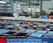 Muncitorii români din Italia s-ar întoarce în ţară pe salarii de peste 450 de euro