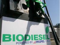 Banca Mondială: Biocombustibilii, motivul scumpirii alimentelor la nivel global cu 75%