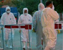 Gripa porcină şi teoria conspiraţiei. O jurnalistă austriacă acuză OMS şi ONU de bioterorism şi tentativă de genocid