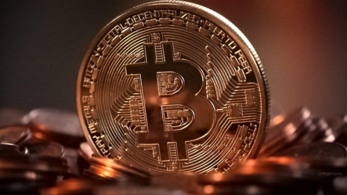 cat valoreaza un bitcoin)