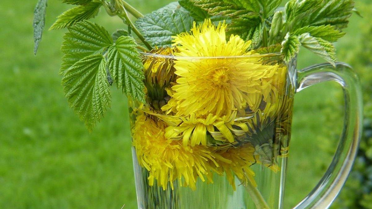 11 plante care te pot ajuta să slăbeşti
