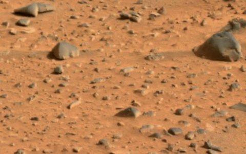 Un cercetător român a găsit dovada existenţei vieţii pe Marte. Vezi cum a descoperit microorganismele