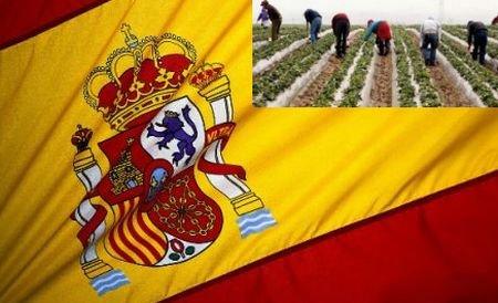 """""""Să fie bătuţi şi trimişi în ţara lor!"""" Atac violent la adresa românilor din Spania"""