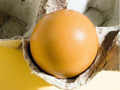 Minunea care se găseşte într-un ou de găină. Cercetătorii au rămas uluiţi când au descoperit ce poate VINDECA