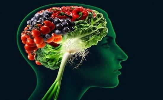 Creierul nostru este influenţat de regimul alimentar 479