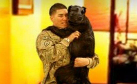 Imaginile care emană bucurie. Întâlnirea emoţionantă dintre un câine şi prietenul său cel mai bun 407