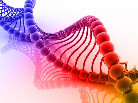 STUDIU: Sistemul imunitar poate cauza leucemie, dacă îşi RATEAZĂ ţinta  482