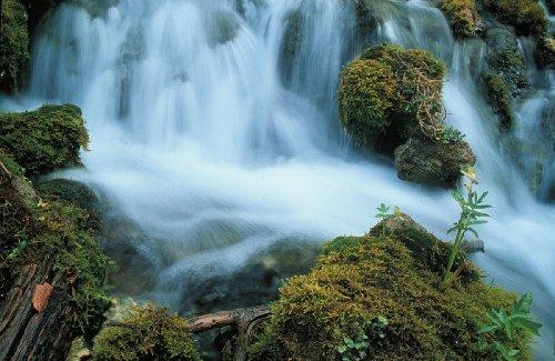 """""""Zona NEMURIRII"""" descoperită într-o staţiune montană din România. """"Apa este atât de curată încât nu are NICIO BACTERIE. E unic pe Glob"""" 442"""