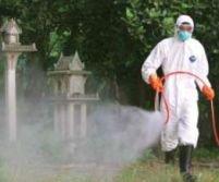 Focar de gripă aviară în nordul Bulgariei