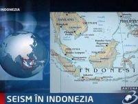 Seism de 6,6 grade în Indonezia. Alertă de tsunami