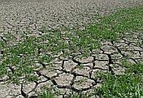 În 2008, România va oscila între secetă şi inundaţii