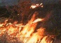 Zece hectare de vegetaţie uscată, incendiate în comuna Scoarţa