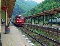 Vaslui. Locomotiva unui tren rapid a luat foc în gara Buhăeşti