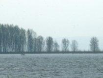 Circa trei tone de peşte mort, după ce un baraj de pe râul Jiu a fost deversat