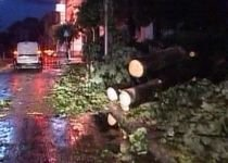 Ploi şi vijelii, în mai multe zone din ţară: Furtunile au smuls copaci şi au dat traficul peste cap (VIDEO)