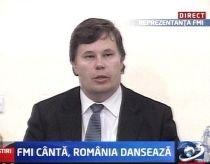 FMI: O recesiune severă a lovit România. PIB-ul va scădea cu 8-9% în 2009