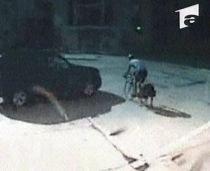 SUA. Un politician trece pe roşu şi loveşte în plin un biciclist (VIDEO)