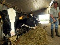 Dacian Cioloş concurează cu un austriac pentru postul de comisar european pe agricultură