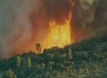 Incendiu devastator în Chile: 15 case distruse şi mai multe hectare de pădure arse în întregime