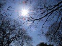 Vreme caldă de Revelion. Vezi prognoza meteo pentru următoarele trei zile