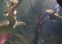 """Două """"sirene"""", angajate la un acvariu din Londra (VIDEO)"""