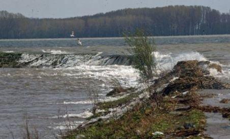 Dunărea a ieşit din matcă la Feteşti. Cota de inundaţie pe Braţul Borcea, depăşită cu 77 cm (VIDEO)