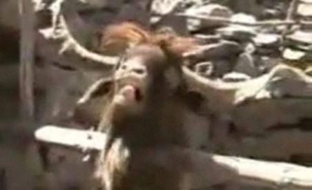 Interviu de tot râsul: Un turist este scuipat de o capră ibex după ce îi cere o părere despre guvernul Zapatero (VIDEO)