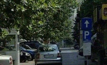 Firma de parcări Dalli, controlată de Udrea şi Cocoş, în lichidare