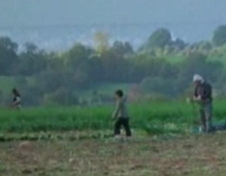 Marea Britanie. Şapte copii români, sclavi la o fermă