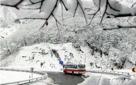 Funcţionarii sud coreeni, sfătuiţi să poarte lenjerie groasă. Căldura, oprită în toate ministerele
