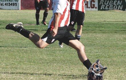 Jucător de fotbal, ameninţat pentru uciderea unei bufniţe