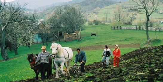 Oltenii din Horezu, cei mai longevivi români
