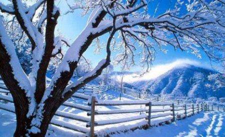 Ninsoare ca în mijlocul iernii. La munte, un microbuz a rămas blocat în nămeţi