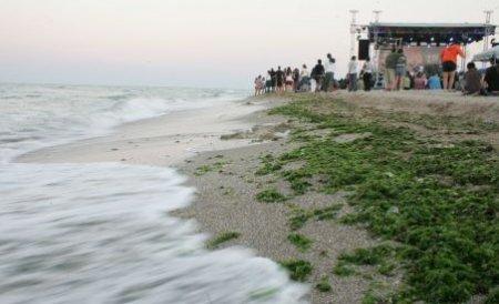 Constanţa. Un şofer a intrat cu maşina pe plajă, aproape de valurile mării