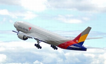Plantele necomestibile şi rumeguşul devin combustibil pentru aeronave