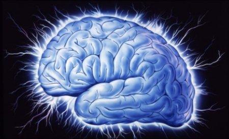 Metode de stimulare a creierului, pentru a face faţă volumului de informaţii zilnice