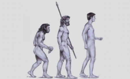 Eurasiaticii se trag dintr-o femeie-hibrid al cărei tată era Neanderthal