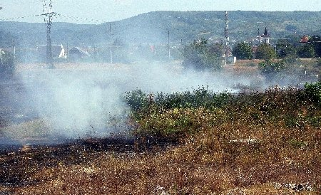Incendiul din complexul Razelm – Sinoie a fost stins după 7 ore