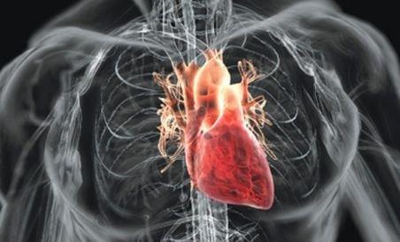 România, pe locul 3 în lume în ceea ce priveşte mortalitatea din cauze cardiovasculare