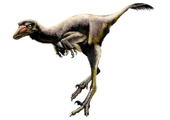 Fosilele unui dinozaur vechi de 75 de milioane de ani, descoperite în SUA