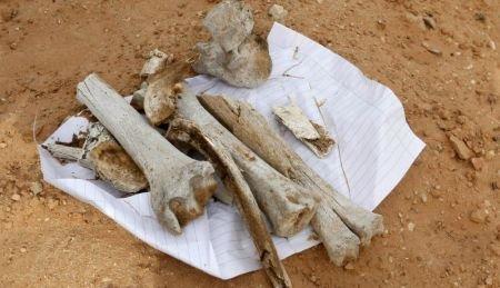Descoperire macabră în Libia: Peste 1.700 de cadavre, găsite într-o groapă comună