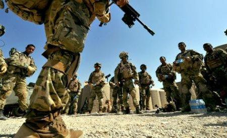 Cruzime în Irak: Soldaţii americani omoară un câine pentru a se amuza