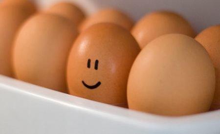 """Ouă """"stresate"""" din Polonia, distribuite în România cu cifra 1. Poliţia controlează depozite de alimente"""