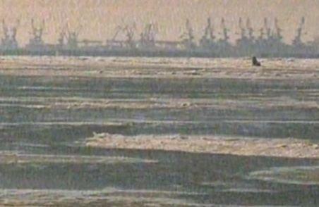 Locuitorii din Delta Dunării, izolaţi de ger şi gheaţă. Doar elicopterul poate ajunge la ei