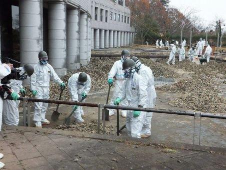 Studiu: Numărul păsărilor şi viaţa insectelor s-au redus semnificativ în jurul centralei de la Fukushima