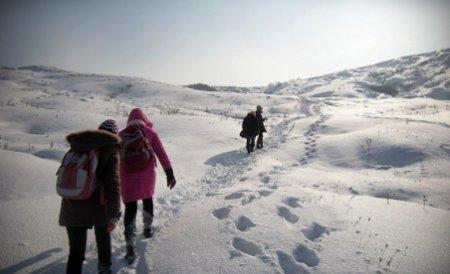 Aproape 3.400 de şcoli din ţară au rămas închise vineri din cauza zăpezii