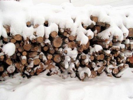 Bacău : Un grup de medici a donat bani pentru cumpărarea de lemne destinate sinistraţilor din Vrancea