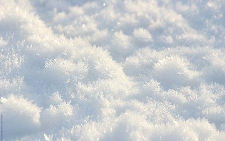 Ministrul sănătăţii: Număr record de victime într-o singură zi din cauza frigului