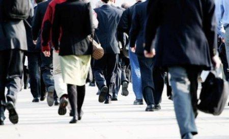BNS: Aproximativ 10.000 de salariaţi riscă să rămână şomeri în 2012