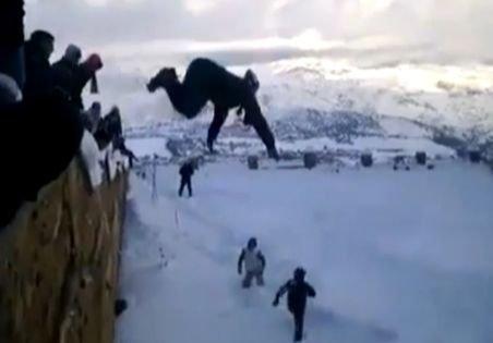 Ultima modă în materie de distracţie, în Algeria: Plonjonul în nămeţii de zăpadă